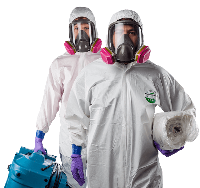 Mold abatement services Ottawa