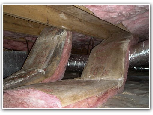 wet insulation