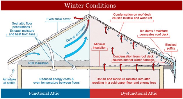 attic conditions for mold